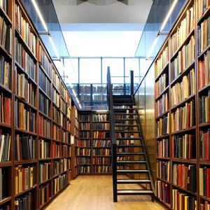 Библиотеки Старой Руссы