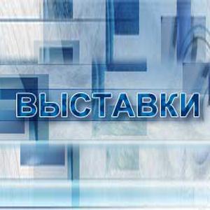 Выставки Старой Руссы